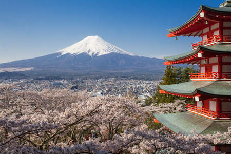 Japan beautiful landscape Mountain Fuji and Chureito red pagoda with cherry blossom sakuraのeditorial素材