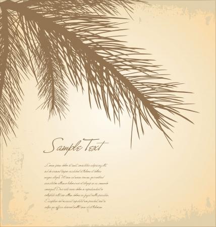 Pine branch background
