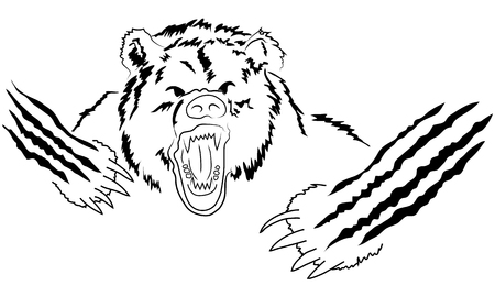 angry bear head. Angry grizzly, powerful predator, strength and wildlife, claw and mammal