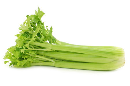 fresh celery on a white background
