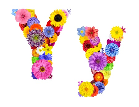 Letter Y of Flower Alphabet Isolated on White. Letter consist of many colorful and original flowers