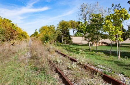 Overgrown and Abandoned Railway Track in Summer