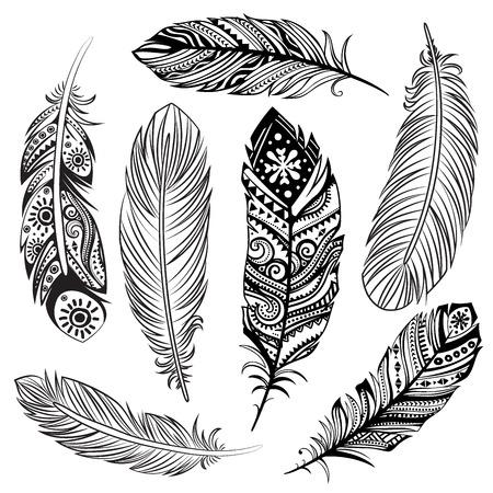 Isolated Set of black ethnic tribal feathers