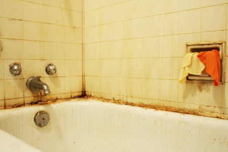 A filthy bathtub with mold and stains and dirty water   Concept for poverty or renovation repair