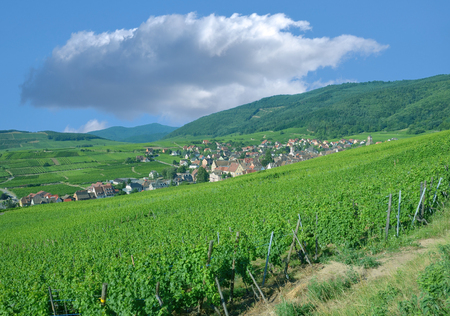 Village of Riquewihr in Grand Est(former Alsace),France