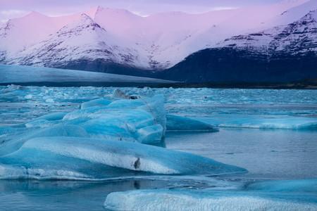 Iceland glacier lagoon Jokulsarlon ice bergs and blocks at sunset pink light in winter