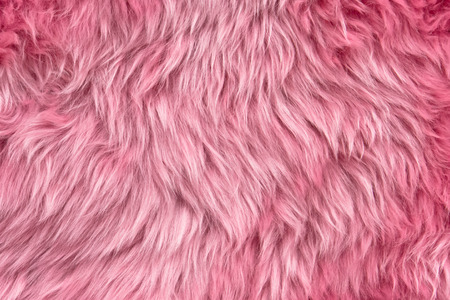 Close up of a pink dyed sheepskin rug as a background