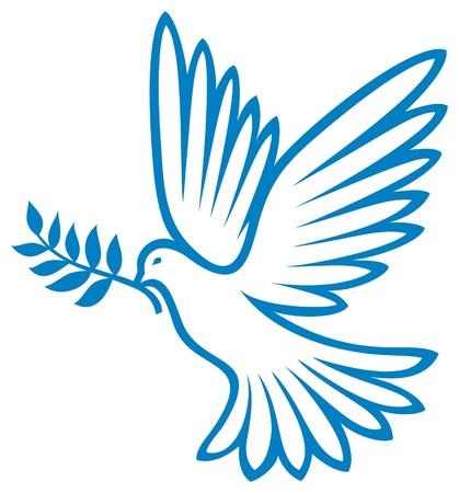 dove of peace  peace dove, symbol of peace