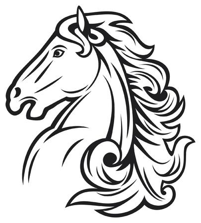 horse head  mustang head, beautiful horse