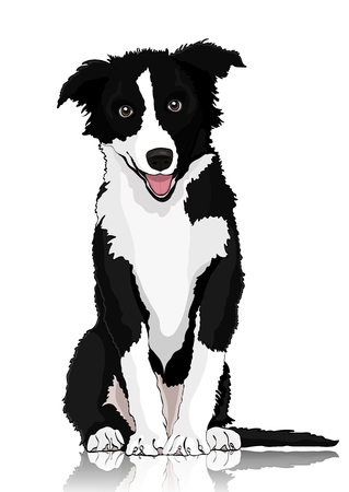 Illustration pour Dog vector drawing. Black and white cartoon shaggy dog full-length isolated on white background - image libre de droit