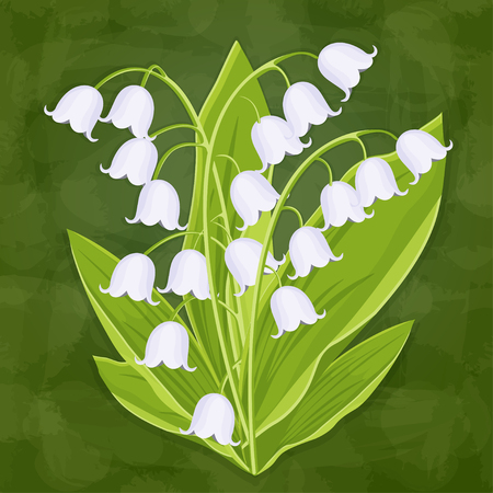 Illustration pour Lily of the valley, spring bouquet of delicate flower, vector illustration. White buds forest flowers bluebells, stalks and leaves isolated on green textural artistic background, card, design element - image libre de droit
