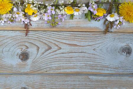 Bunch of field flowers, daisies, buttercups, Pentecostal flowers, dandelions in a border row on a old blue gray spring summer wooden background with empty copyspace
