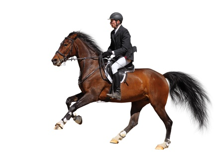 Photo pour A rider in a show jumping running at full speed - isolated on white - image libre de droit