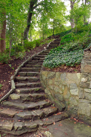 Stone steps leading the way up