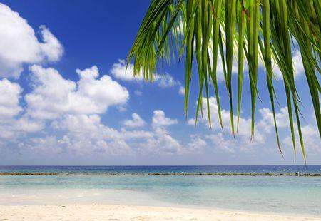 Photo for beach scene at maldives - Royalty Free Image