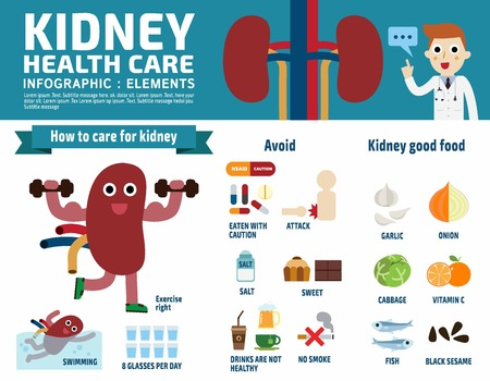 Kidney infographic elements flat header banner design illustration.Kidney cartoon mascot characterand icon isolated on white background.Brochure template cover for magazine or website