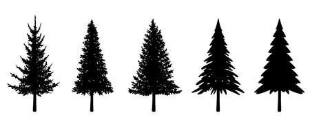 Illustration pour Illustration set of various fir trees (silhouette) - image libre de droit