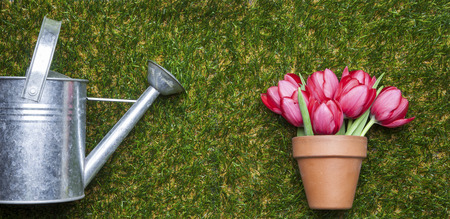 Flowerpot with tulips on grass, copy space