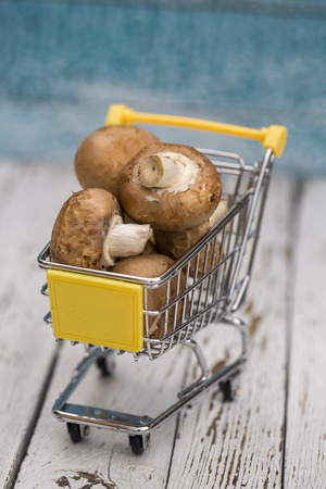 Miniature shopping cart with mushrooms