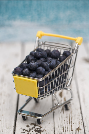 Miniature shopping cart with blueberries