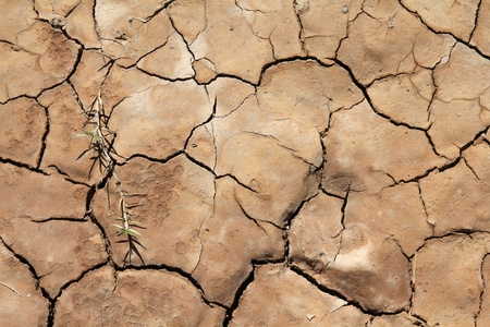 Greenhouse effect and global warming - dry cracked soil in Cuba