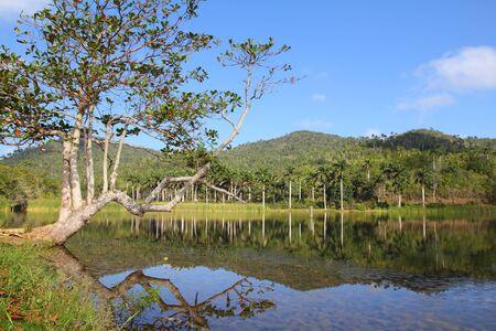 Cuba, famous Biosphere Reserve in Sierra del Rosario mountain range - Las Terrazas.