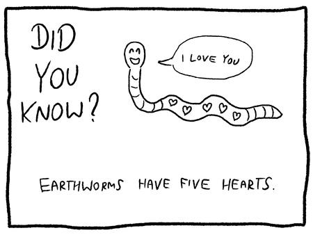 Animal trivia - fun cartoon doodle concept. Newspaper funny comic fact.