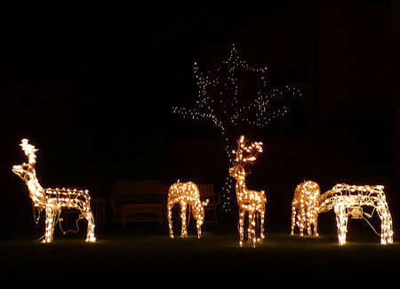 Christmas outdoor decorations, lit reindeer, South West England