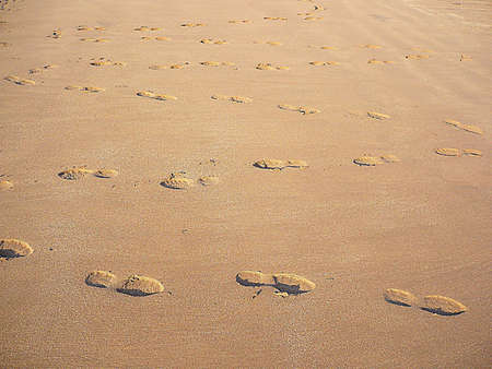 Zig zag journey of footprints through the sand, South West England