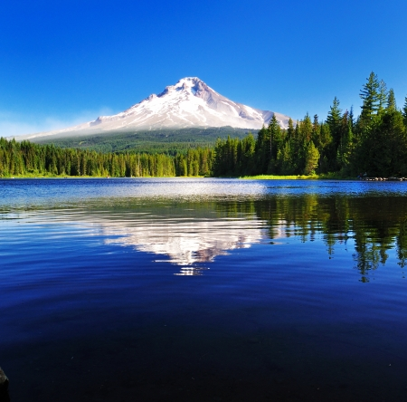 Foto de The Mount Hood reflection in Trillium Lake  - Imagen libre de derechos