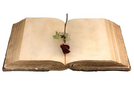 Blank ancient book