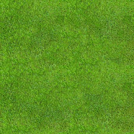 Foto de Seamless Green Lush Grass Texture. Fresh Backdrop. - Imagen libre de derechos