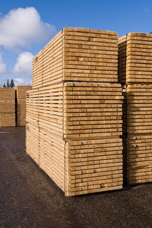 Photo pour Piles of pine planks stacked for drying - image libre de droit