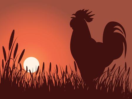 Illustration pour rooster greeting sunrise on a lawn - image libre de droit