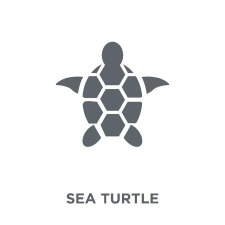 Illustration pour Sea turtle icon. Sea turtle design concept from Summer collection. Simple element vector illustration on white background. - image libre de droit
