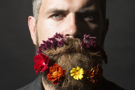 Portrait of attractive unshaven man with long beard and hendlebar flowerbed moustache with marigolds flowers orange red and yellow violet purple color on black background, horizontal picture