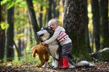 Little girl embracing husky dog in autumn park