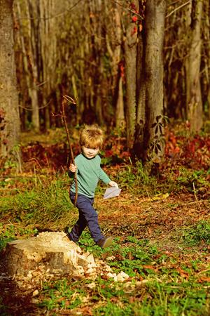 Kid walk in woods. Little kid play on fresh air. Taveler and adventurer