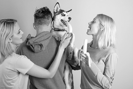 Providing him different vitamins and minerals. Pet sitters feed the pet. Happy women and man play with family pet. Group of friends with purebred dog breed. Happy family have fun with husky dog