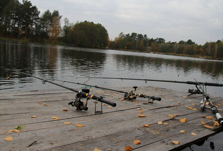 Fishing rod - Fishing on the lake in the woods