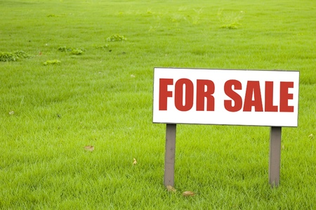 For sale sign on green grass