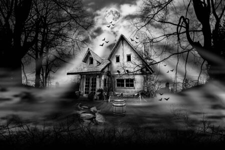 Photo pour Haunted house with dark scary horror atmosphere Black and White Photography - image libre de droit