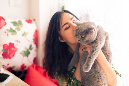 Foto de Young Asian beautiful female owner holding and kissing her own adorable British shorthair cat inside room - Imagen libre de derechos