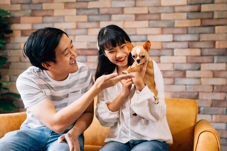 Foto de Young Asian male and female pet owners play with Chihuahua dog in indoors living room at home. They both sit on sofa and enjoy playing with dog. Modern couple life concept - Imagen libre de derechos