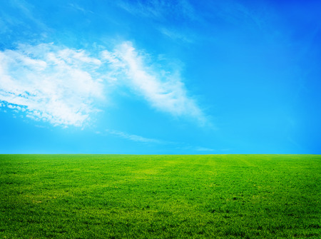 Foto de nature background, grass and sky in Crimea - Imagen libre de derechos