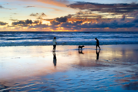 Photo pour Couple playing on beach with dog, scenic sunset seascape in background, Bali, Indonesia - image libre de droit