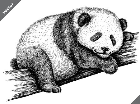 Photo for black and white engrave isolated panda vector illustration - Royalty Free Image