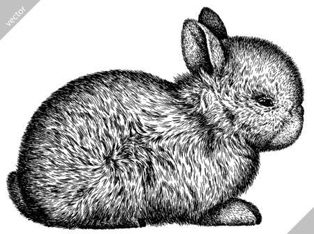 Illustration pour black and white engrave isolated rabbit vector illustration - image libre de droit