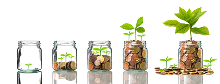 Photo pour Gold coins and seed in clear bottle on white background,Business investment growth concept - image libre de droit
