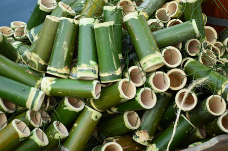 Green bamboo tube hanging with rope